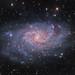 M33 The Triangulum Galaxy by Terry Hancock www.downunderobservatory.com