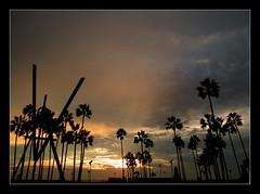 Venice Beach Sunset II