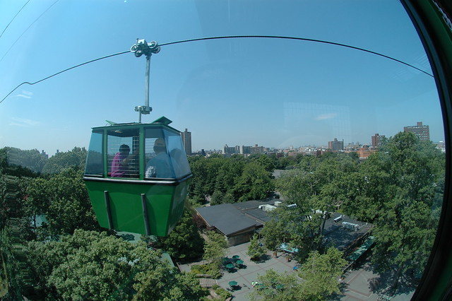 Skyfari at Bronx Zoo, by John Morton