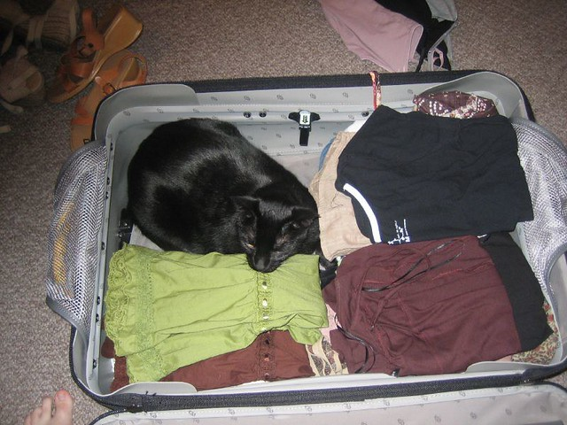 Squee wanted to come with me
