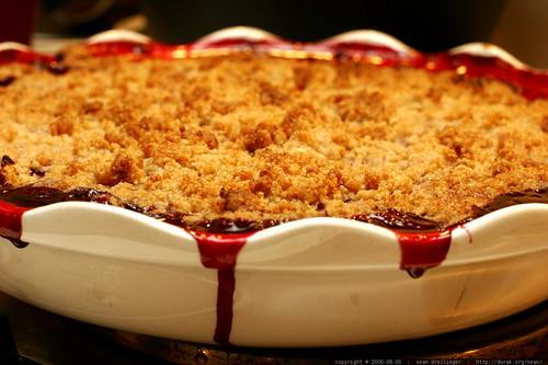 blackberry-apricot cobbler - _MG_9374