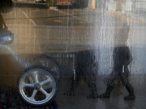 frenchtown nj njflickrmeet window condensation tricycle trolls wheel freeassociation asseenthroughaveil