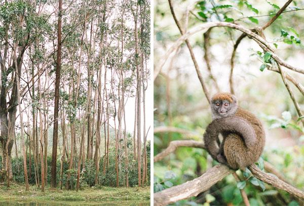 RYALE_Madagascar_Blog2_009