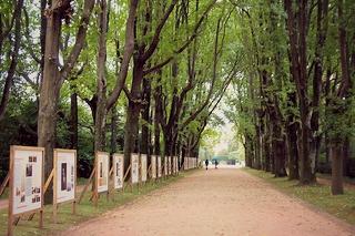 http://hojeconhecemos.blogspot.com.es/2013/10/do-parque-serralves-porto-portugal.html