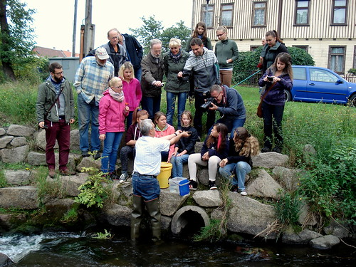 Wildfisch-Symposium 2015