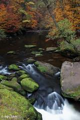 Autumn colours / Herbstfarben an den Irreler Wasserfällen