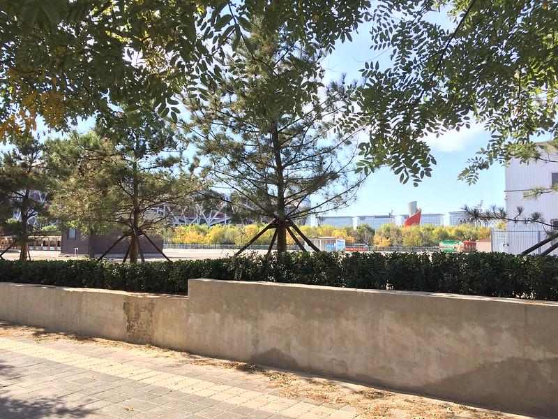 Olympic Cauldron next to Bird's Nest.