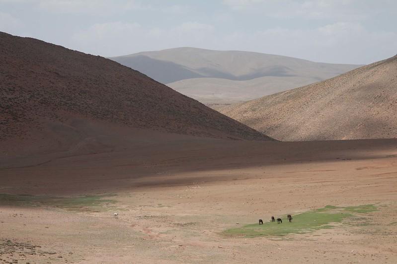 Marokko 2015-07_642