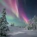A winter's aurora by adamhillstudios