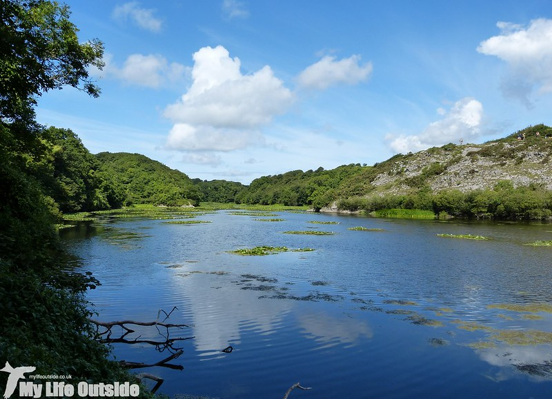 P1150454 - Bosherston Lily Ponds