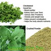 Chickweed Tea is great for the whole body by Natures SlimTea
