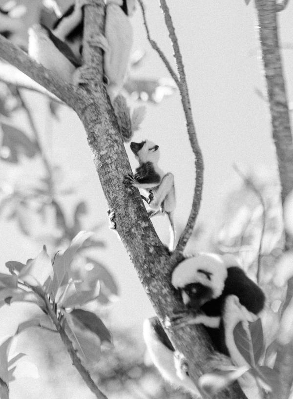 RYALE_Madagascar_Blog3_025