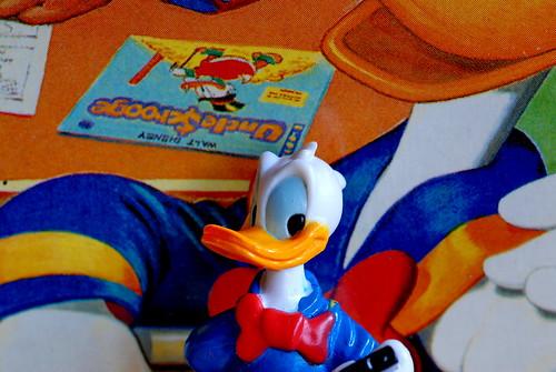 (Double) Duck Selfie