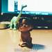 The Good Dinosaur | Arlo & Spot | VSCO E8