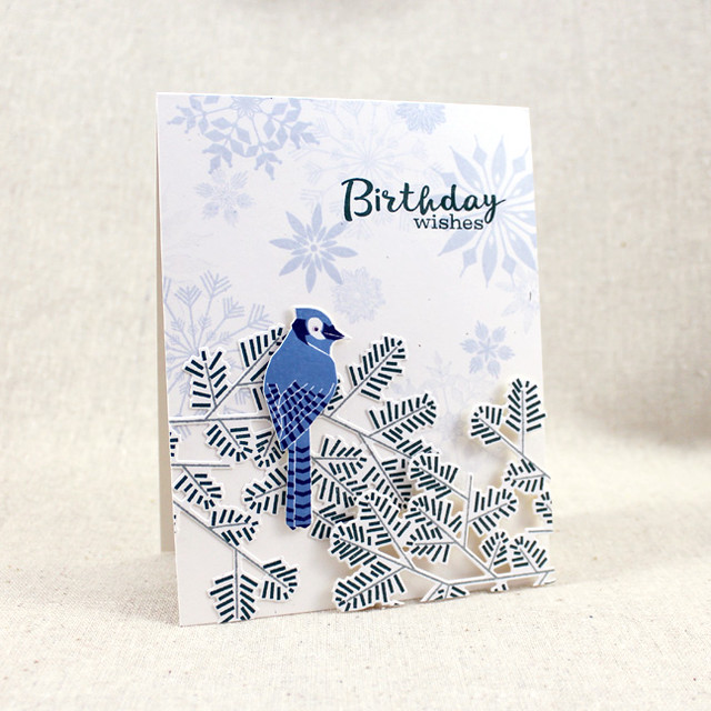Birthday Bluejay Card