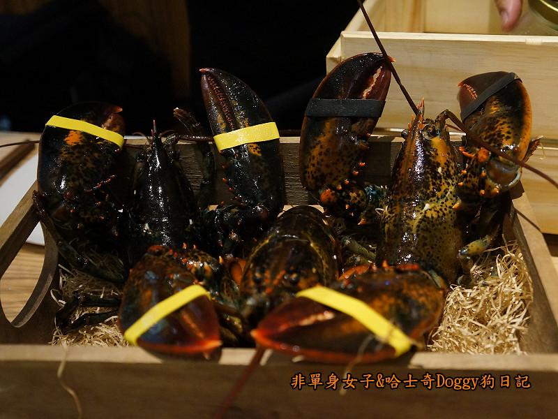 愛新覺羅萬古鍋石板燒海陸大餐08