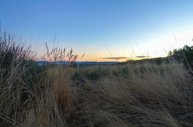 Gillians Camino Pics-46