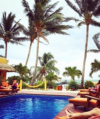 Piscine et cocktails face à la mer des Caraïbes 🍹 #belize #cayecaulker