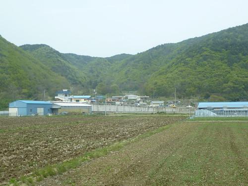 Co-Gyeongju-Côte Est-route (11)