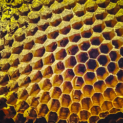 pattern, honeycomb, yellow, macro photography, design,