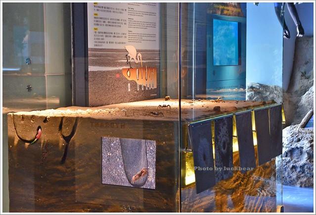 基隆國立海洋科技博物館008-DSC_7351