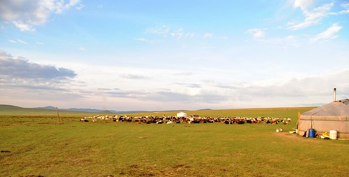 126 Viaje al oeste de Mongolia (11)