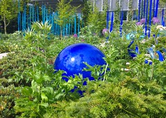 Blue globe nestled in the green