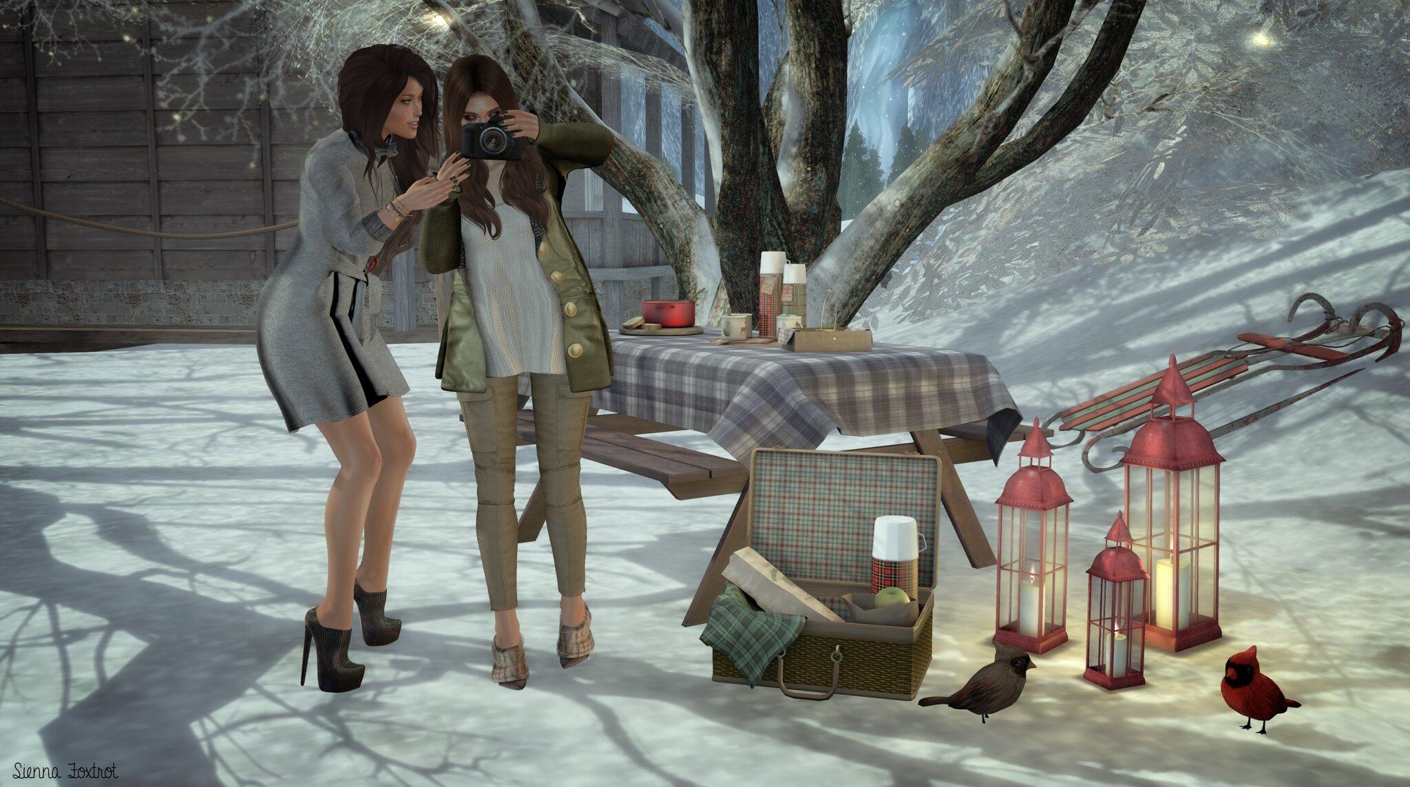 Winter Snaps