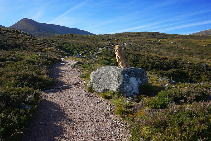 Easy path below the northern corries