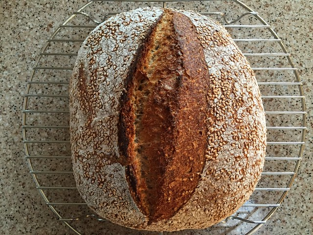 Sesame-Wheat