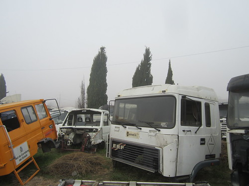 IMG_9718