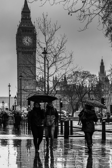 Wet Westminster