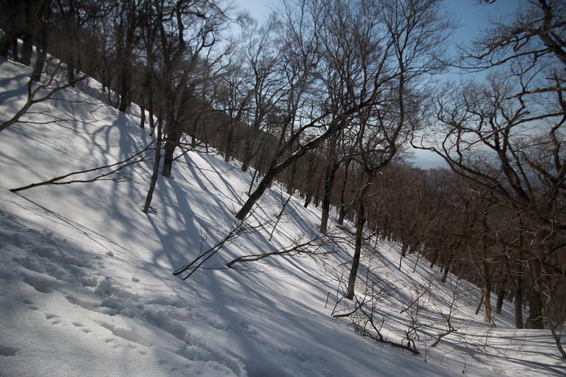 20150308-伯耆大山-0933.jpg