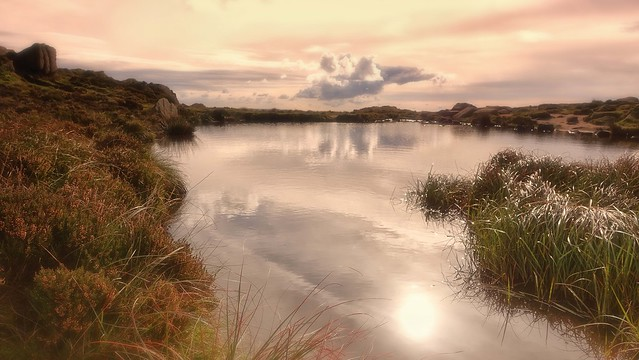 Doxey Pool, The Roaches