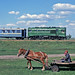 lijn Antonovka - Zaretchnoye Ty2 066 km70,2 op 31-5-2004