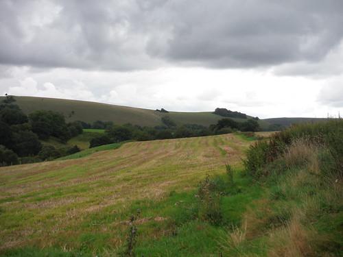 Views along Dengrove Bottom