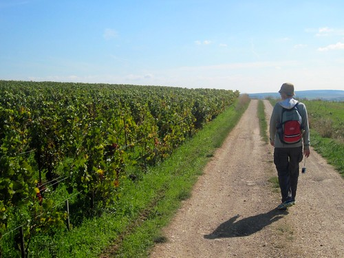 Circuit de Cerisiers, Hike From Vaux to Auxerre on the GR