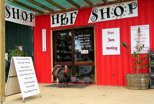 Huntley Berry Farm