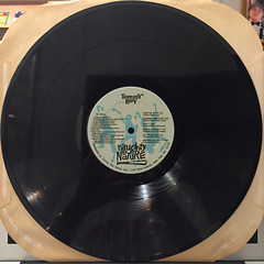 NAUGHTY BY NATURE:NAUGHTY BY NATURE(RECORD SIDE-A)