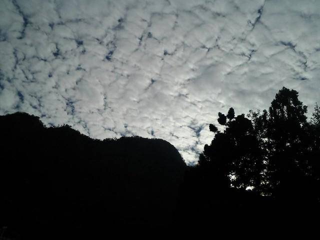 24524早晨陽光普照,下午霧茫茫。