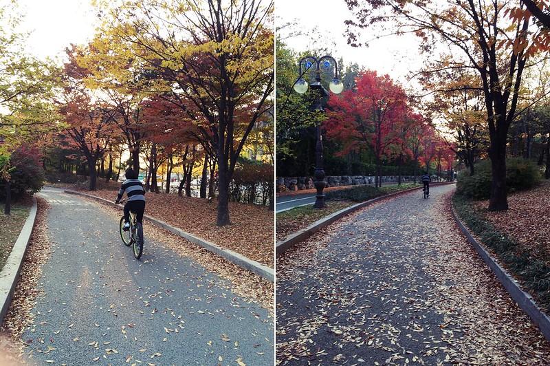 bike3_vickyt
