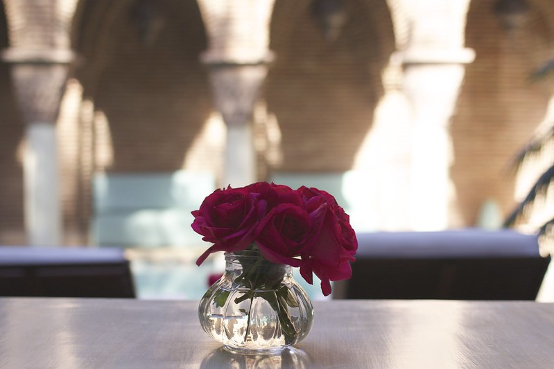 la-sultana-roses