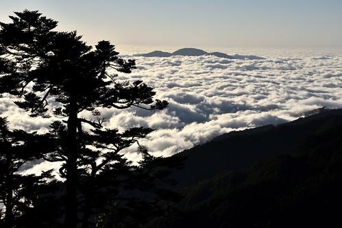 能高越嶺道-天池山莊雲海
