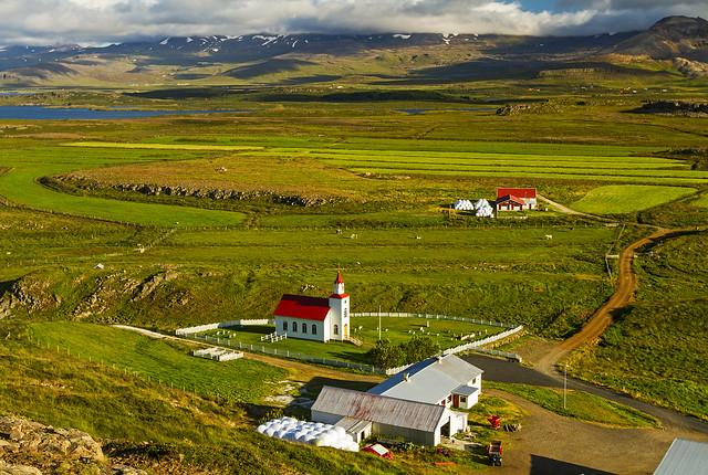 Icelandic Life