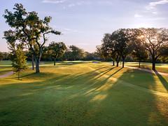 8th Hole, Royal Oaks Country Club