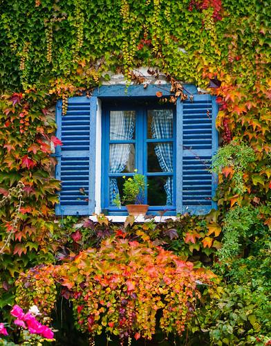 Giverny-15.jpg