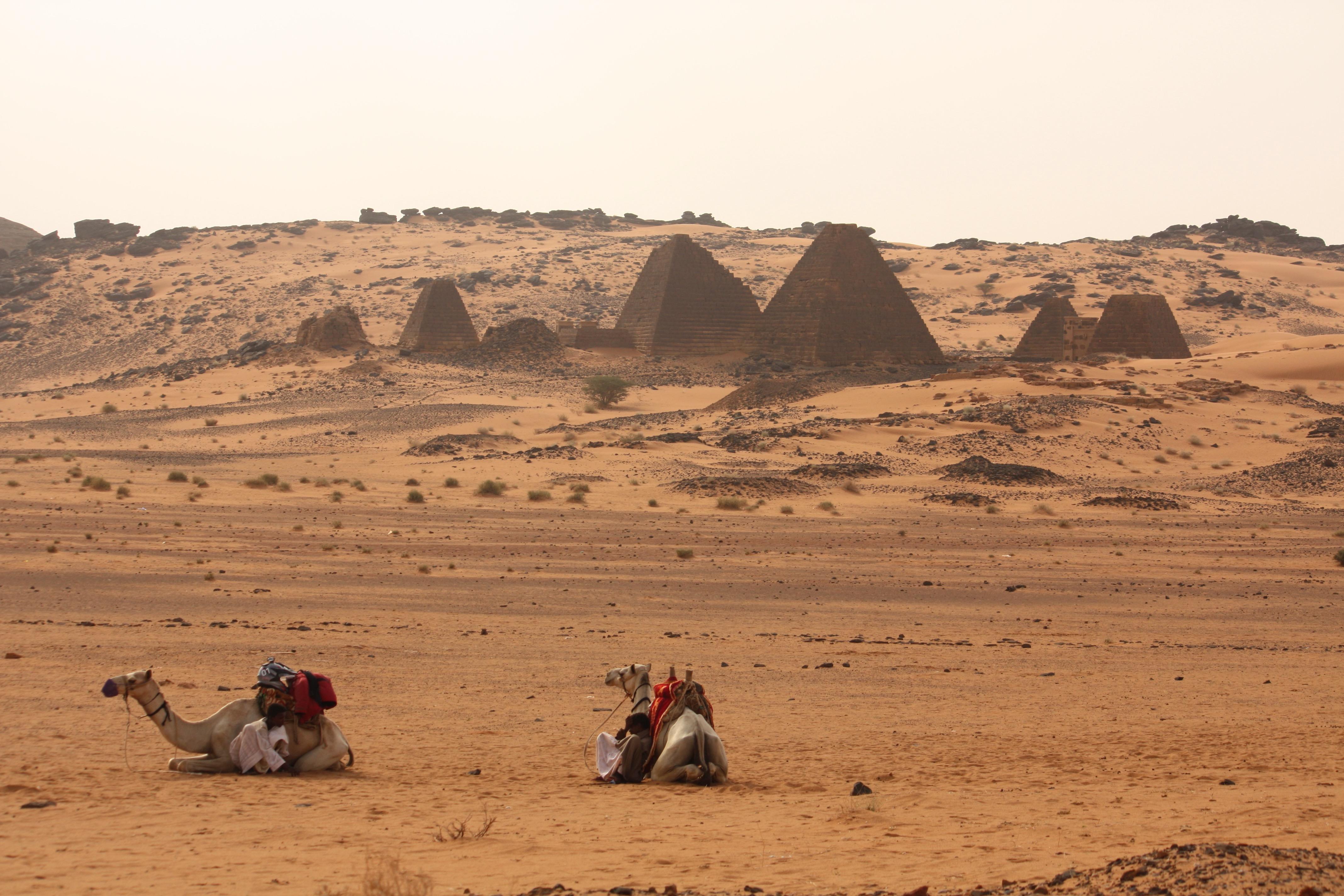 Pyramiden-mit-Kamelen