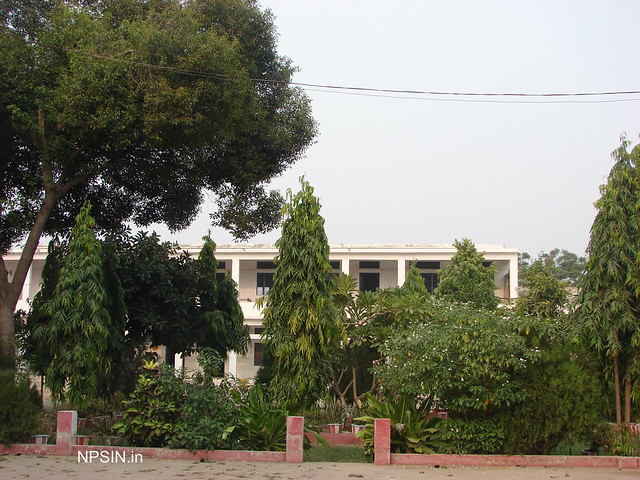 Second Park Area in Kshetriya Inter College (KIC)