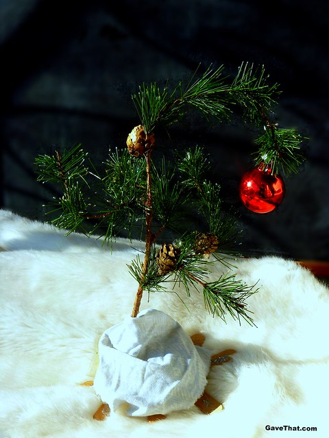 DIY Charlie Brown Christmas Tree on Gift Style Blog Gave That