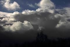 Wolkenhimmel (17)